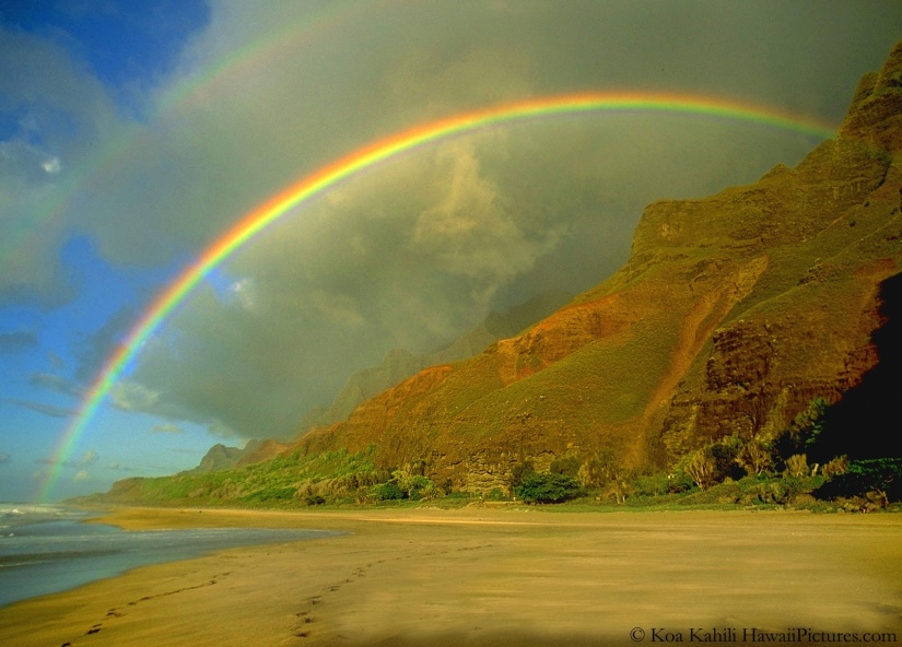 A Rainbow After the Storm- Preventing Suicide in the LGBTCommunity